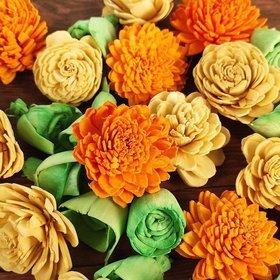 Kwiaty sola mix wiosenny 48/op
