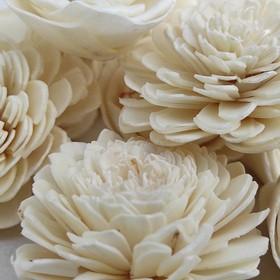 Suszone kwiaty na stroik, wianek, potpourri 30 szt/op. - białe